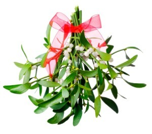 mistletoe_s2.jpg